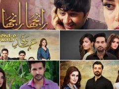 top-pakistani-dramas-of-2019-that-should-not-be-missed